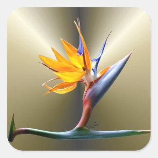 Bird of Paradise Flower Square Sticker