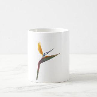 Bird of paradise flower (Strelitzia reginae) Classic White Coffee Mug