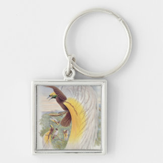 Bird of Paradise, from 'Birds of New Guinea' Key Chain