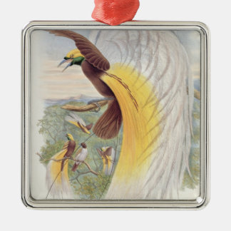 Bird of Paradise, from 'Birds of New Guinea' Metal Ornament