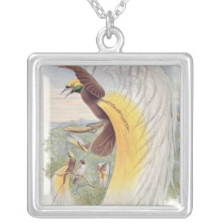 Bird of Paradise, from 'Birds of New Guinea' Silver Plated Necklace