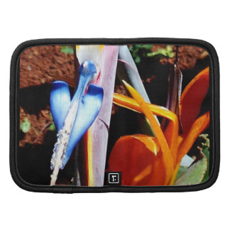 Bird-of-Paradise Front View Organizers