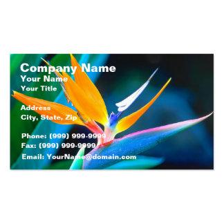 Bird Of Paradise Hawaii Business Cards