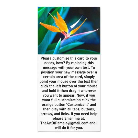Bird Of Paradise (Hawaii) Card