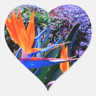 Bird of Paradise Hawaii Heart Sticker