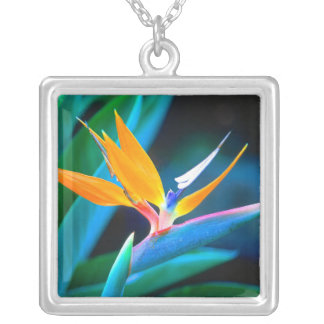 Bird Of Paradise (Hawaii) Silver Plated Necklace