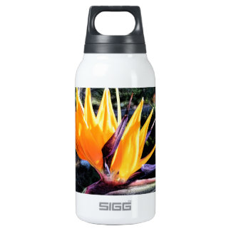 Bird of Paradise Insulated Water Bottle
