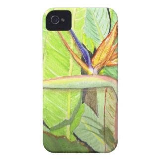 Bird of Paradise iPhone 4 Case