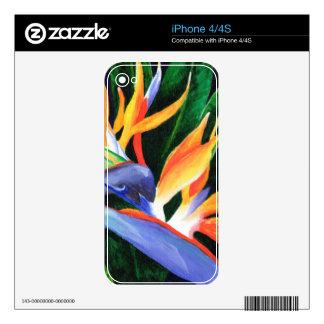 Bird of Paradise iPhone 4S Decal