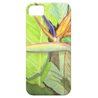 Bird of Paradise iPhone SE/5/5s Case