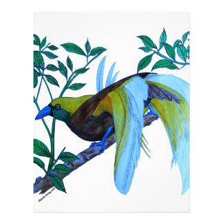 Bird of Paradise Letterhead