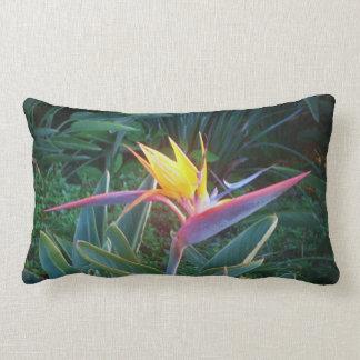 *Bird of Paradise* Lumbar Pillow