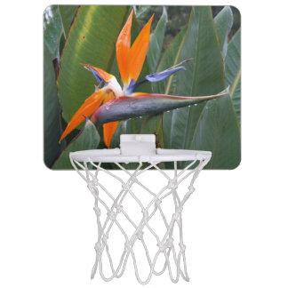 Bird Of Paradise Mini Basketball Hoop