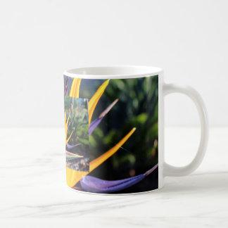 Bird of Paradise Classic White Coffee Mug