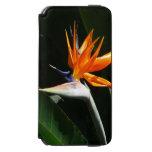 Bird of Paradise Orange Tropical Flower iPhone 6/6s Wallet Case