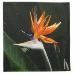 Bird of Paradise Orange Tropical Flower Napkin
