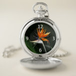 Bird of Paradise Orange Tropical Flower Pocket Watch
