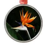 Bird of Paradise Orange Tropical Flower Round Metal Christmas Ornament