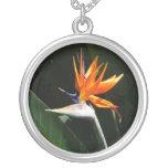 Bird of Paradise Orange Tropical Flower Round Pendant Necklace