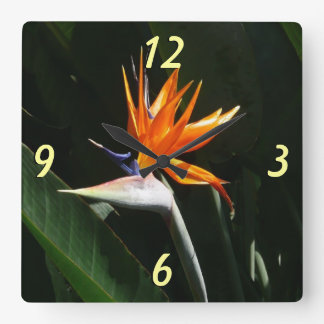 Bird of Paradise Orange Tropical Flower Square Wall Clock