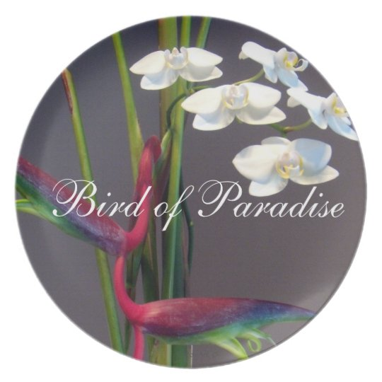Bird-of-Paradise Orchids Dinner Plate