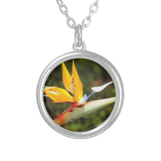 Bird of Paradise photo by Lorette Starr Necklace
