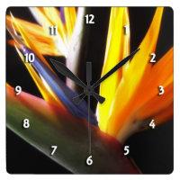 Bird of Paradise Round Clock