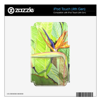Bird of Paradise Skins For iPod Touch 4G