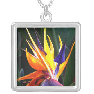 Bird of Paradise Square Pendant Necklace