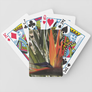 Bird of Paradise (Strelitzia) Bicycle Playing Cards