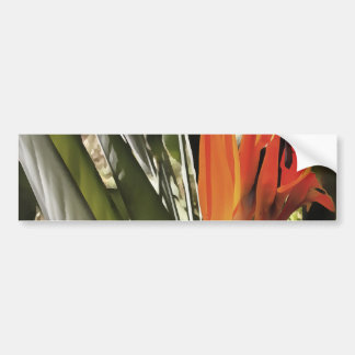 Bird of Paradise (Strelitzia) Bumper Sticker