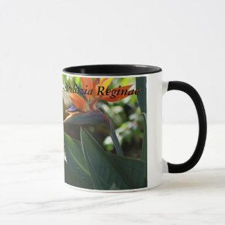Bird Of Paradise - Strelitzia Reginae Gift Mug
