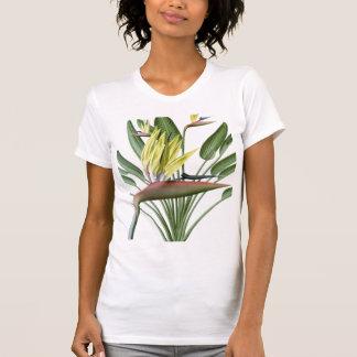 Bird of Paradise T Shirt