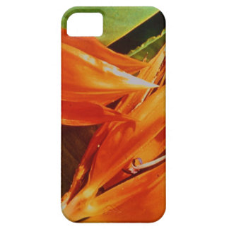 Bird of Paradise  the flower for 9th anniversary iPhone SE/5/5s Case
