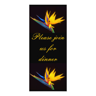 Bird of Paradise: Tropical Flower Card