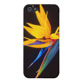 Bird of Paradise: Tropical Flower iPhone 5 Cases