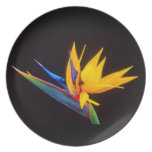 Bird of Paradise: Tropical Flower Party Plate