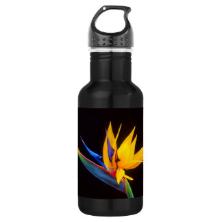 Bird of Paradise: Tropical Flower 18oz Water Bottle