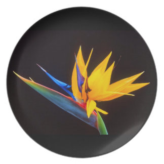 Bird of Paradise: Tropical Flower Party Plates
