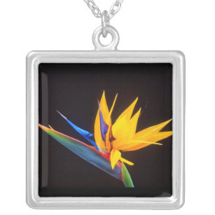 Bird of Paradise: Tropical Flower Silver Plated Necklace