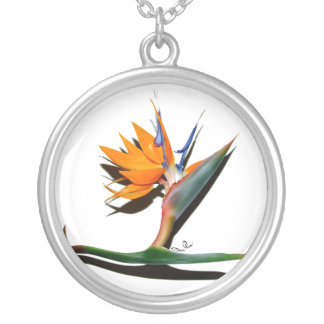 Bird of Paradise with Shadow Necklace