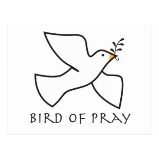 Bird Of Pray Postcard