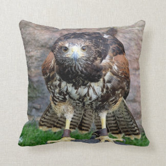 Bird of Prey #15-Red Tailed Hawk Throw Pillow
