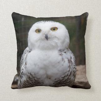 Bird of Prey #19-Snowy Owl Throw Pillow