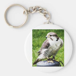 Bird of Prey #2- Peregrine Falcon Keychain