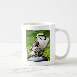 Bird of Prey #2- Peregrine Falcon Classic White Coffee Mug