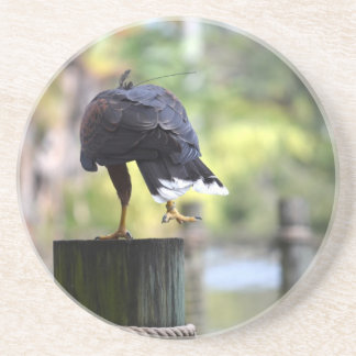 bird of prey back view on log foot up coasters