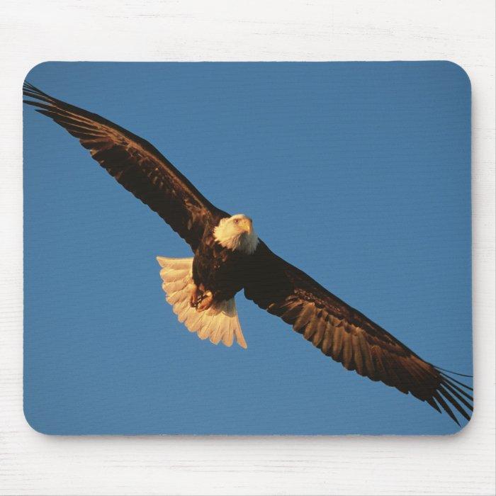 Bird of Prey, Bald Eagle in flight, Kachemak Mouse Pad