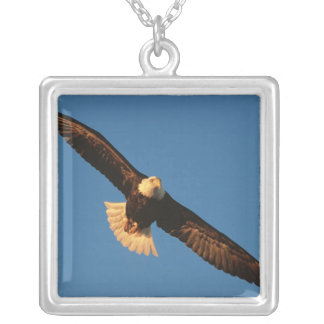 Bird of Prey, Bald Eagle in flight, Kachemak Pendants