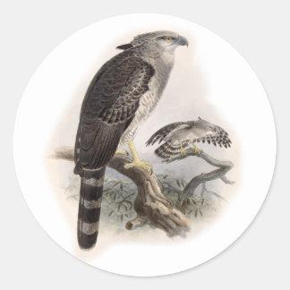 Bird of Prey Classic Round Sticker